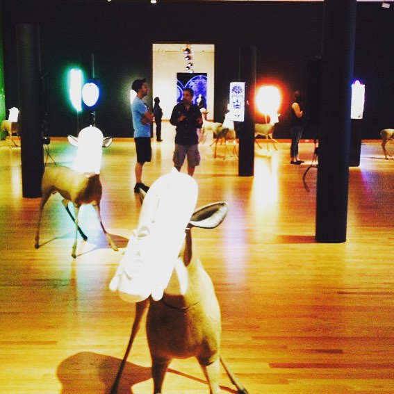 Brendan Fernandes @seattleartmuseum #seattle #samdisguise