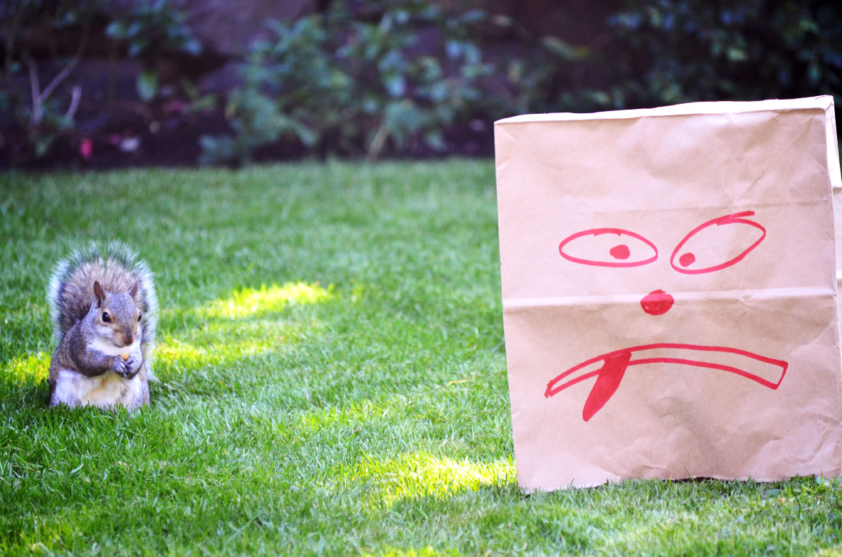 Squirrel and Grouchy Paper Bag Man, Photo by Carollyne Yardley, July 2013.