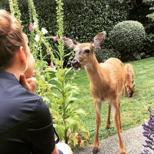 Garden talk. Shared urban space. Interspecies relationship.  June 29th, 2018.
