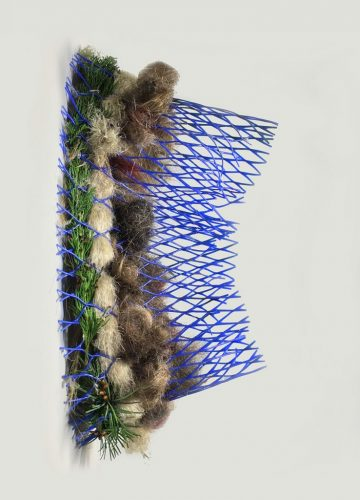 "Molecule, from the Hologenome series, found and foraged: cedar bough (sustainably harvested after windstorm), pampas grass, human hair, plastic mesh tree protector, 2020. 17"" x 10"" x 8"" (side view)"