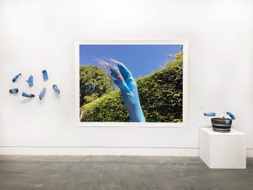 Sympoetics of Squirrealism, Installation view, 18' x 8'.