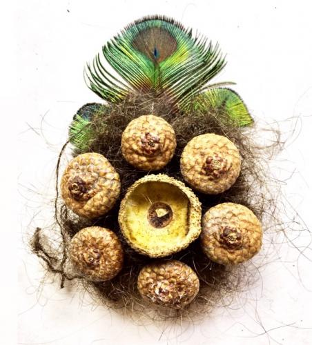 Peacock feathers, acorn cupule, squirrel hair, human hair, 3′ x 4.5′, 2019.