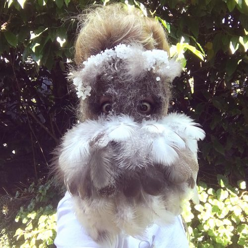 Symbiogenetic Mask, Beacon Hill Park (Fall), Victoria BC, 9″ x 11″ x 2.5″, peafowl feathers, squirrel hair, Garry oak tree branches, human hair, salt and Borax crystals, string, yarn, tulle, wool, 2019.