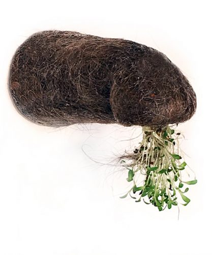 "Semiotic silence C, from the Hologenomes series, 2020, found faucet, human hair, sponge, alfalfa sprouts, 8"" x 4"" x 4"""